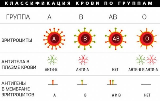 Секс для первая группа крови