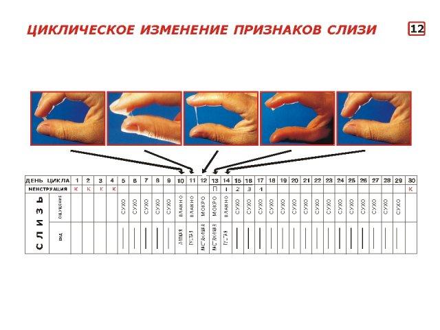 Прозрачное желейное выделение при беременности